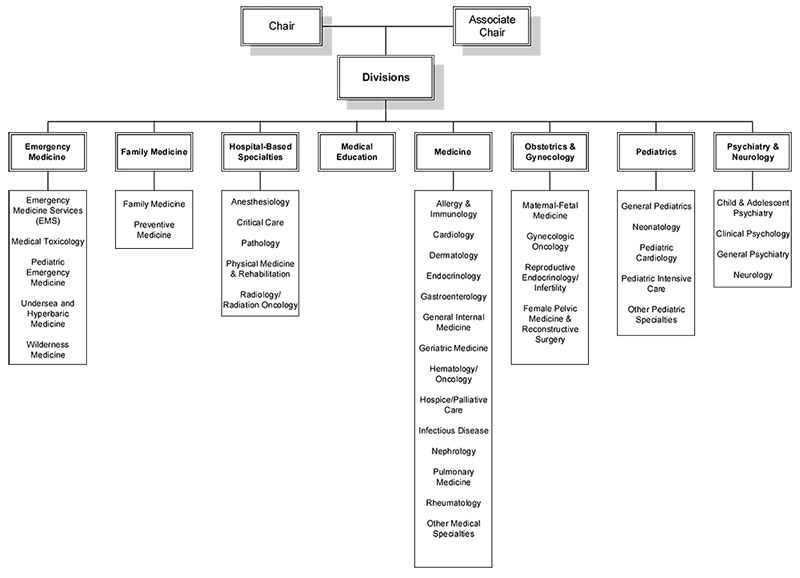 IMSD Department Structure